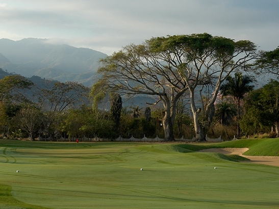 Vista Vallarta, only one of the nine spectacular golf courses in the area.