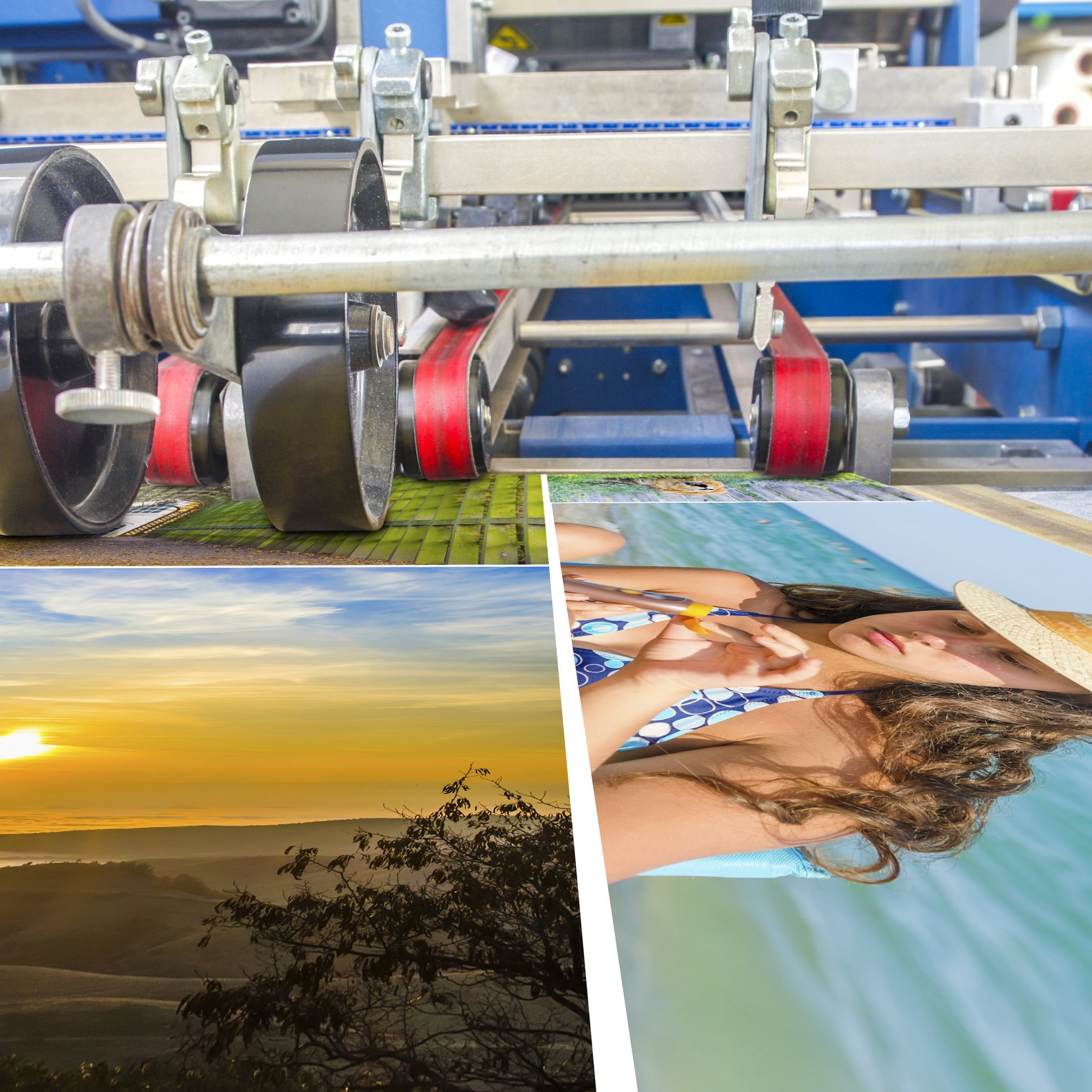 Offset & Full Color Printing