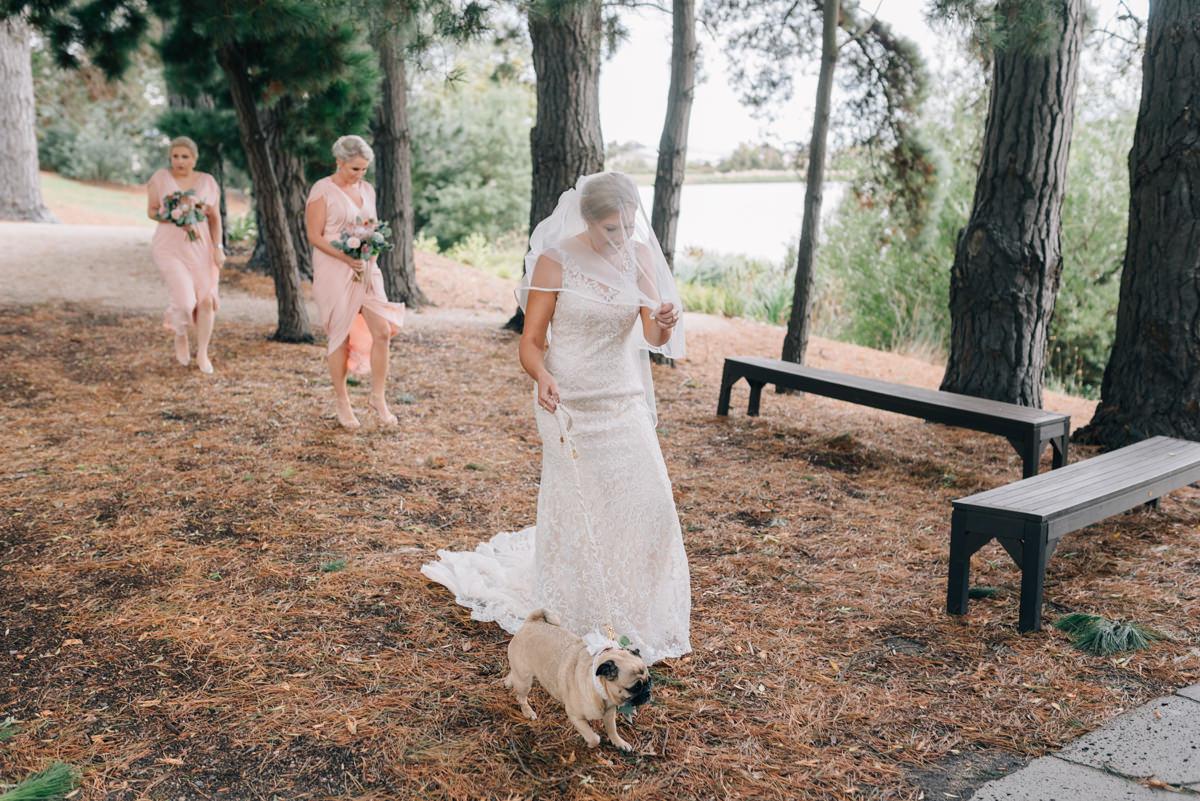 Wedding-Photohraphy-Tasmania-Josef-Chromy-23.jpg
