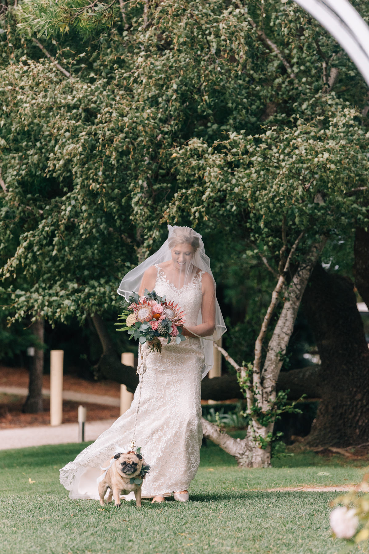Wedding-Photohraphy-Tasmania-Josef-Chromy-27.jpg