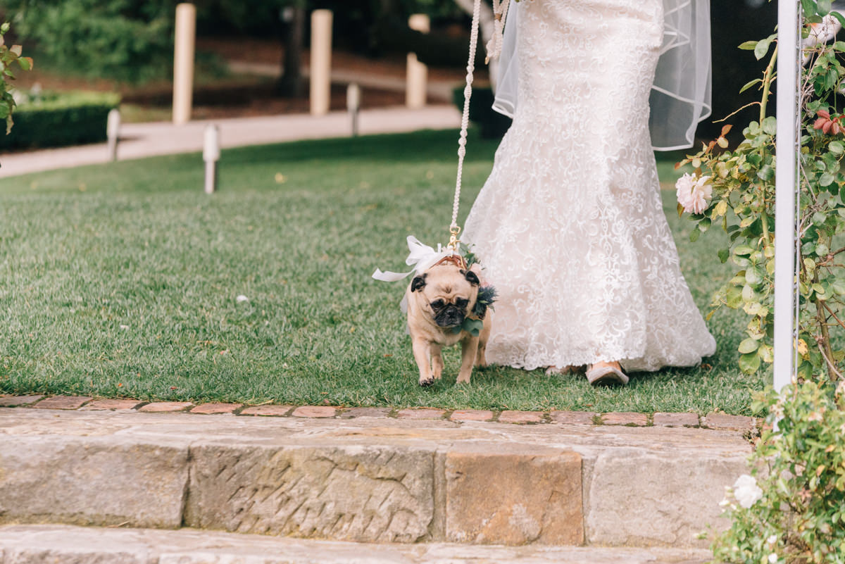 Wedding-Photohraphy-Tasmania-Josef-Chromy-28.jpg