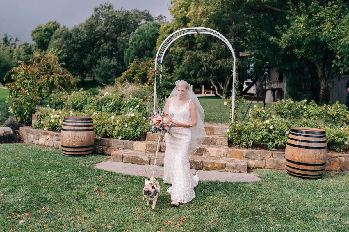 Wedding-Photohraphy-Tasmania-Josef-Chromy-30.jpg