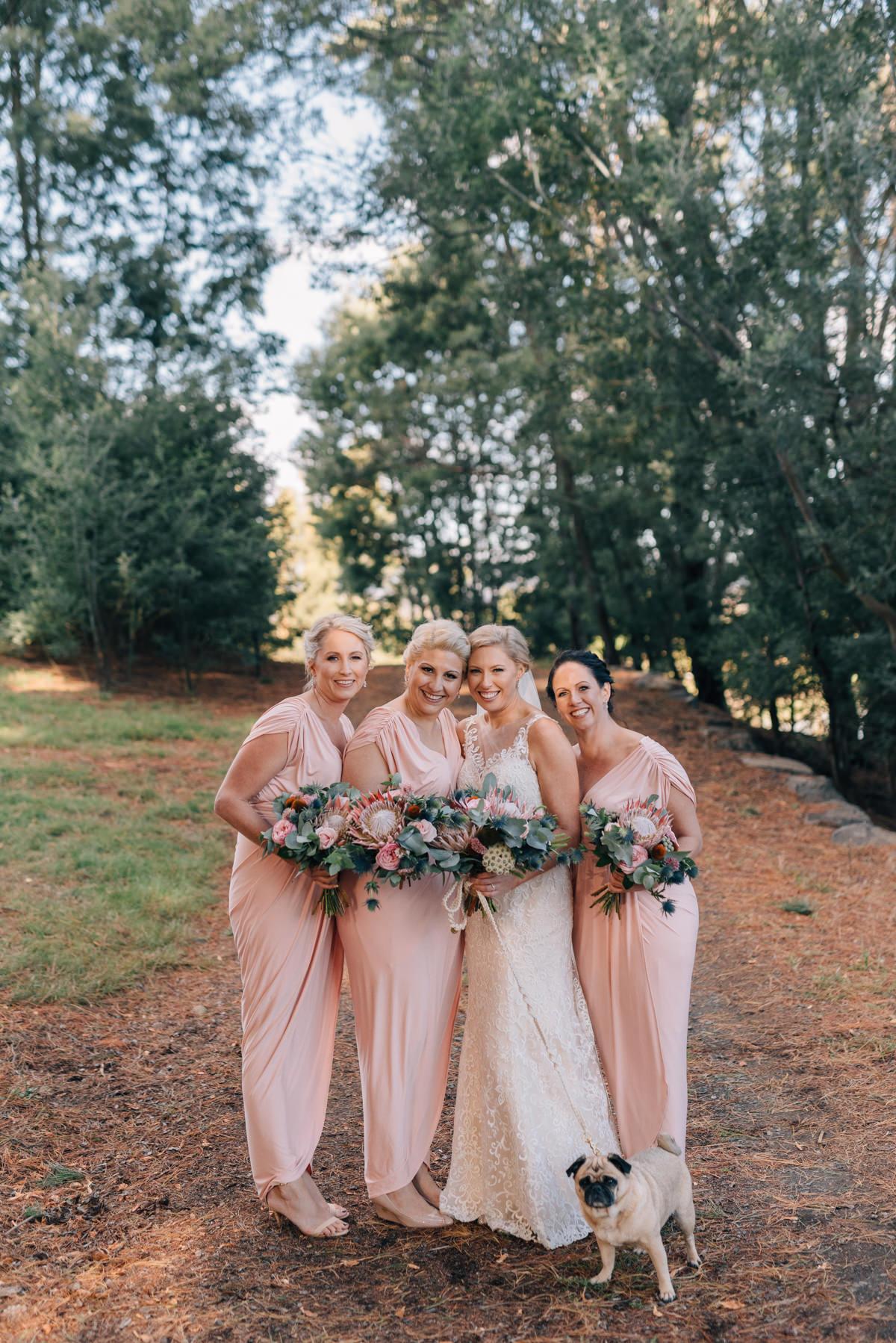 Wedding-Photohraphy-Tasmania-Josef-Chromy-48.jpg