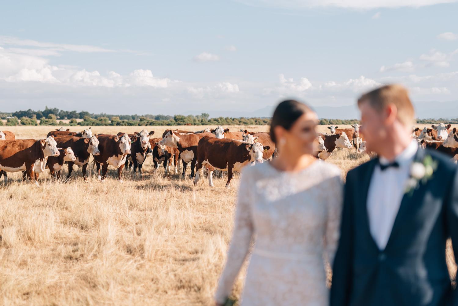 Quamby-Wedding-Photography-103.jpg