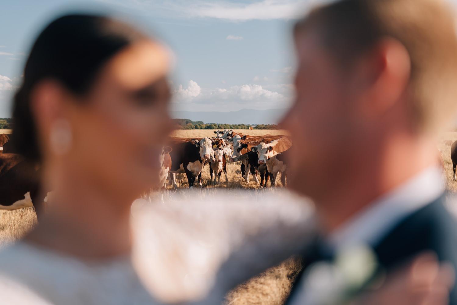 Quamby-Wedding-Photography-107.jpg