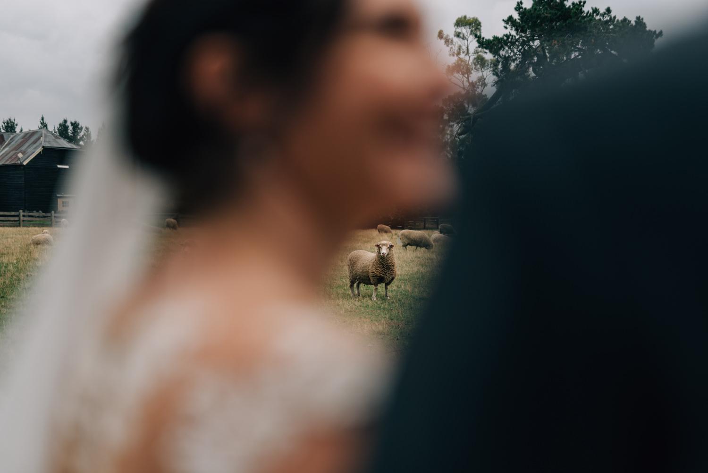 Brickendon-Wedding-Photographer-105.jpg