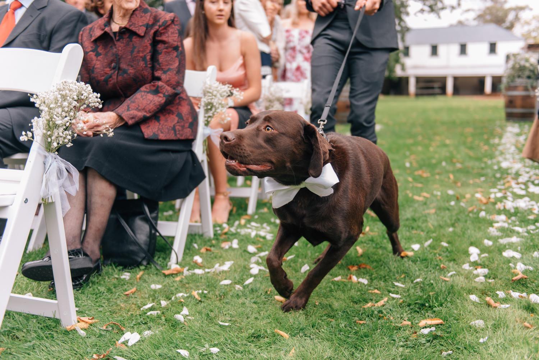 Entally-House-Wedding-Photographer-37.jpg