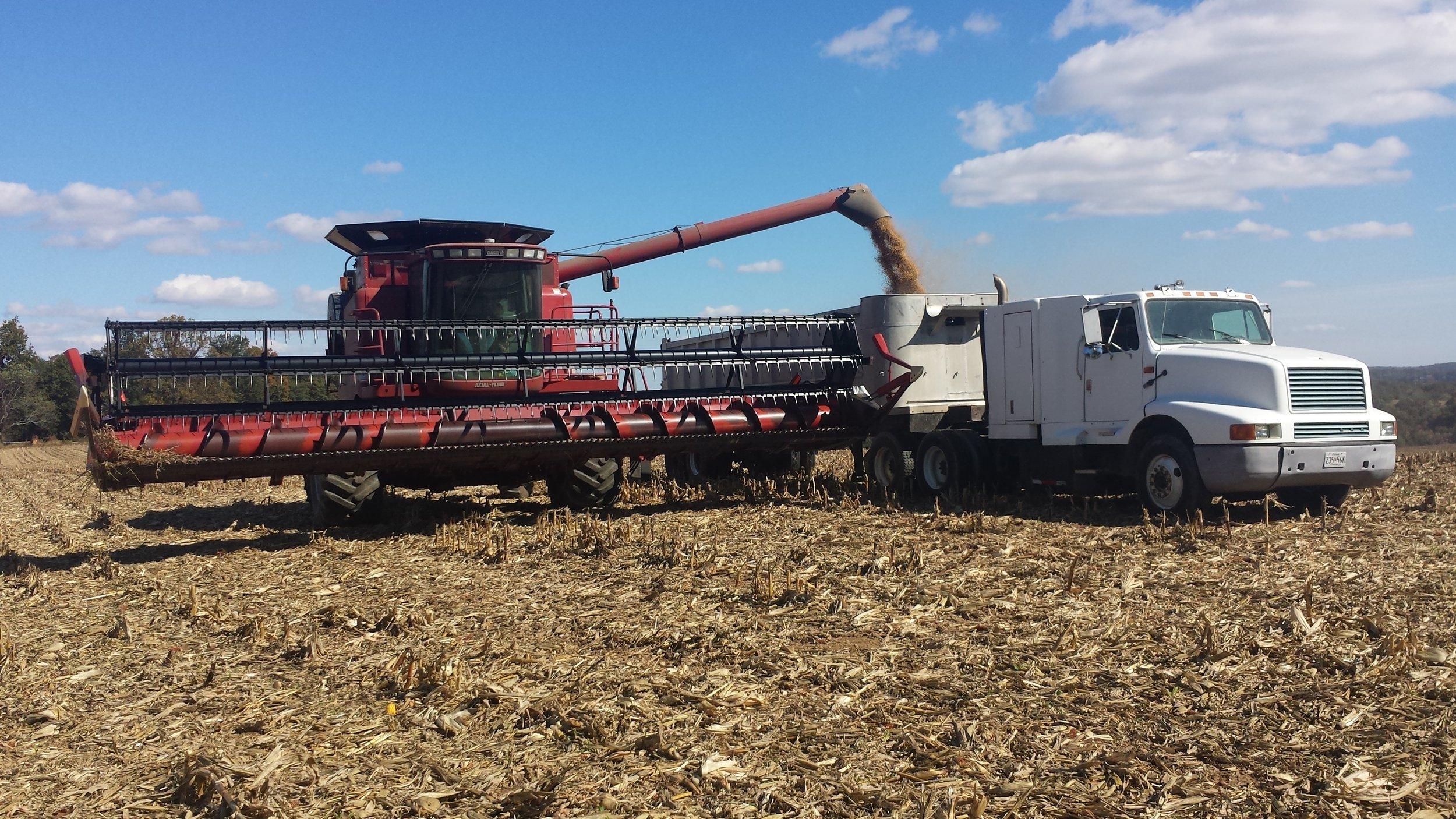 Combine and truck harvest.jpg