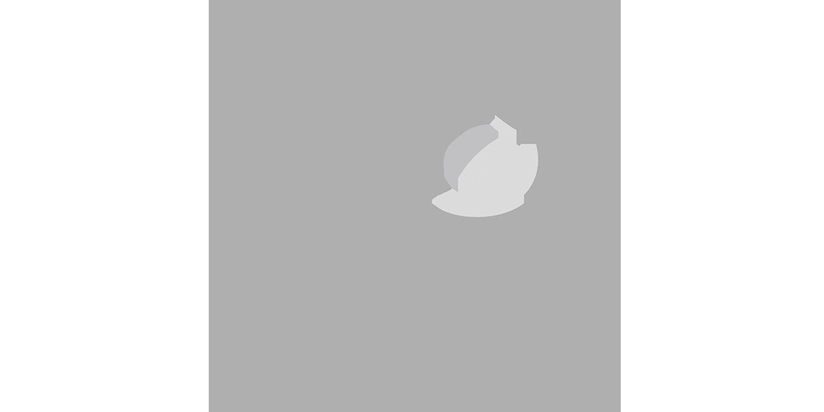 PressLogos__vagesteem.png