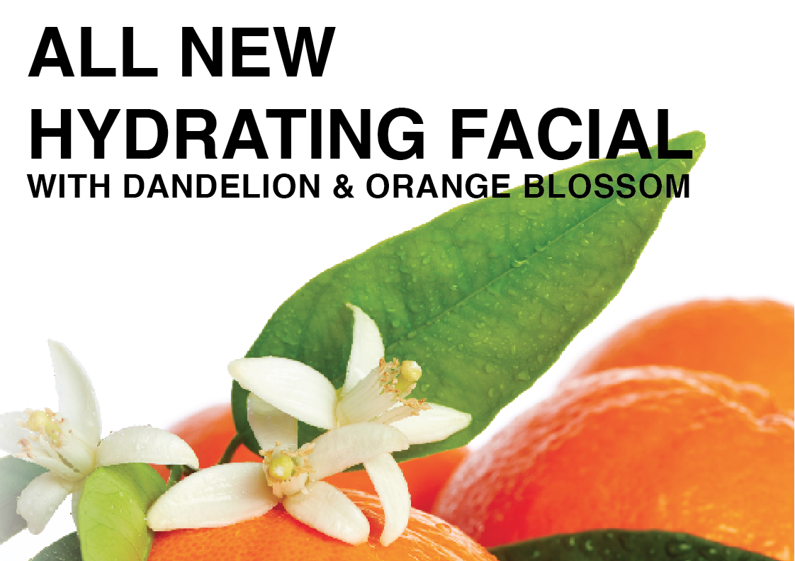 All new hydrating facial