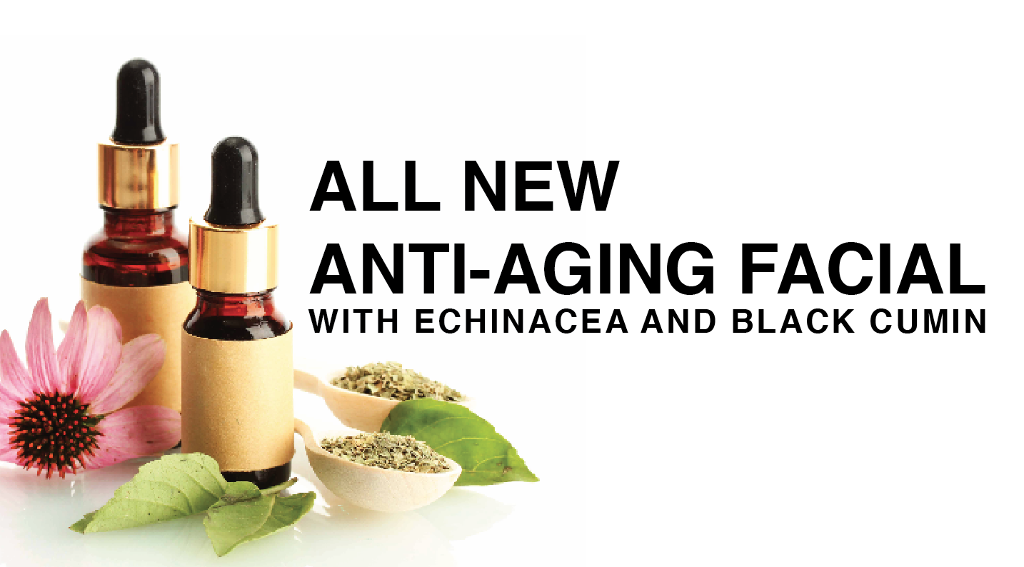 New Anti-Aging Facial