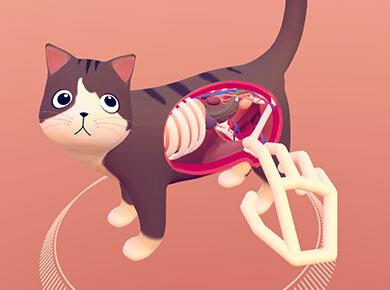 VR Cat Explorer