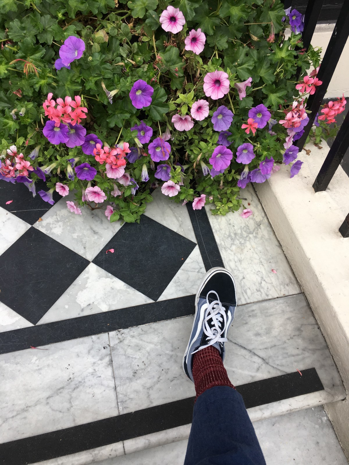 Slowing down in London, admiring the flowers at every turn.