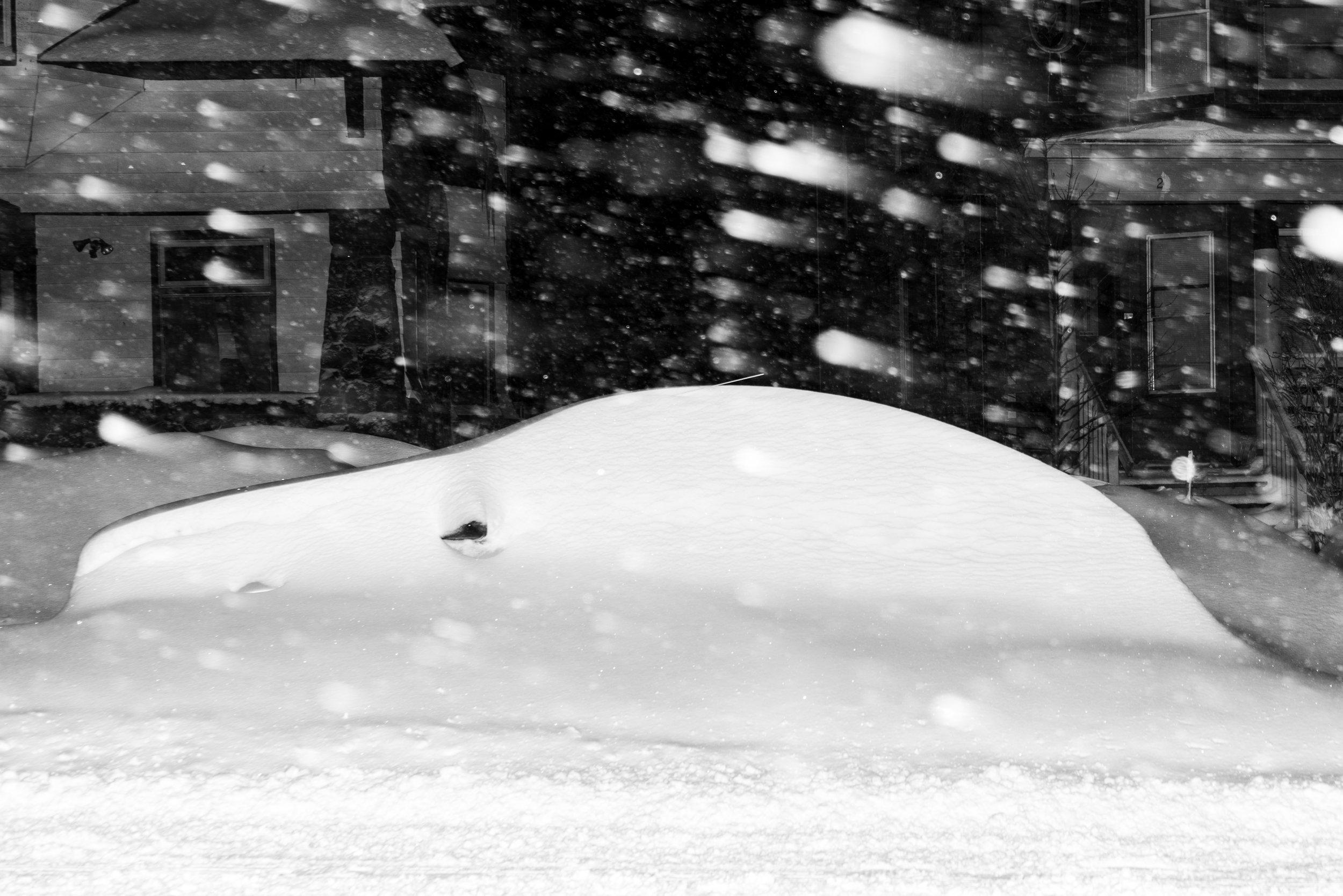 blizzard (2 of 2).jpg