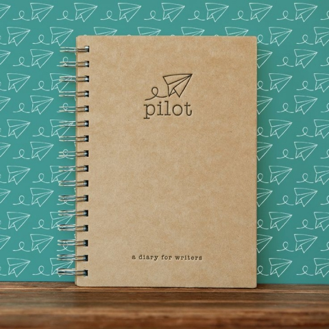 Pilot's Diary for Writers