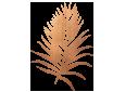 copper-leaf.png
