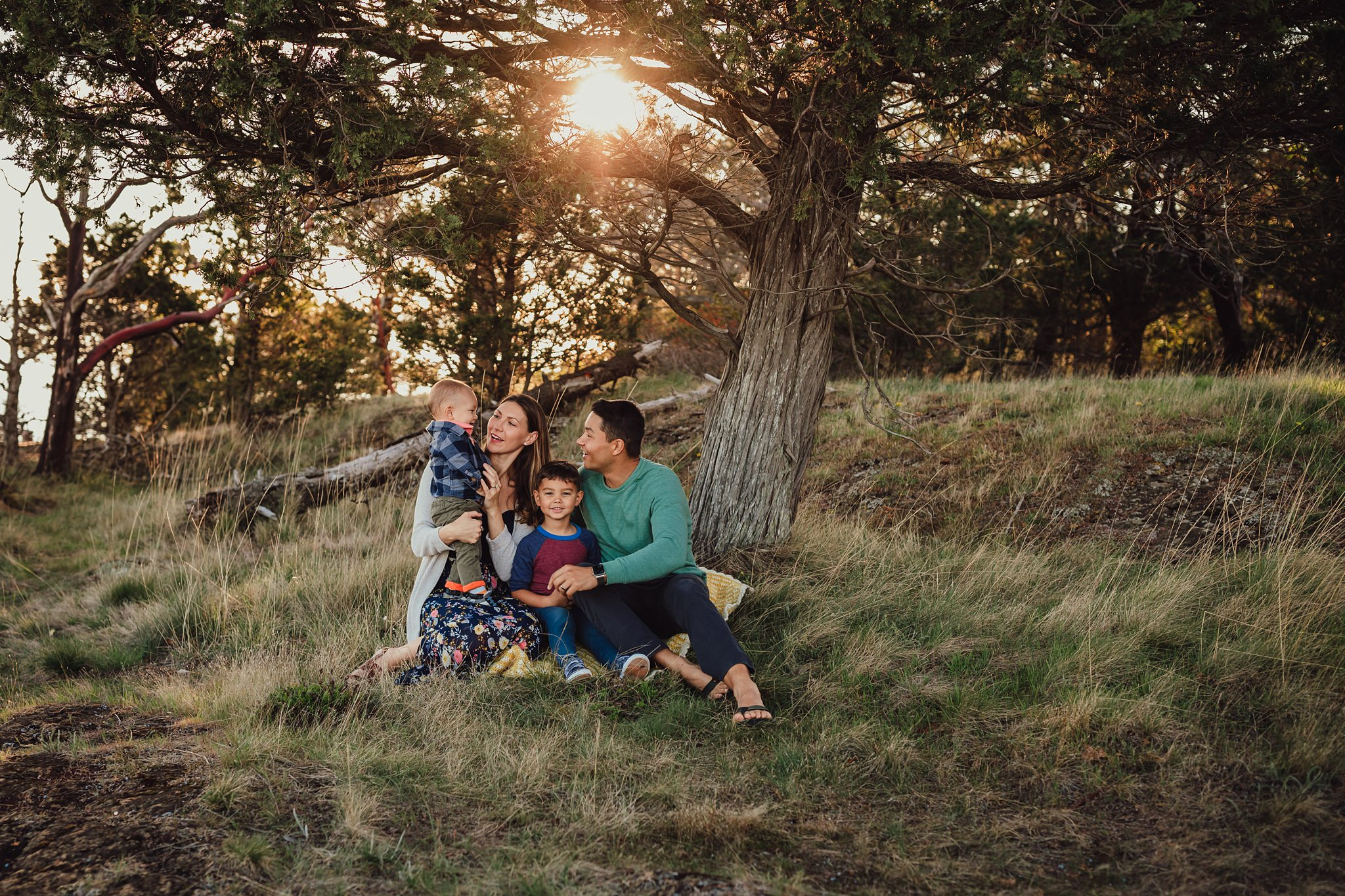 family snuggles under tree during photo session