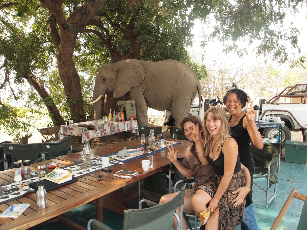 Elephant friends - South Flow game 2014.jpg