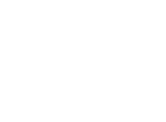 Terms and Conditions Logo.png