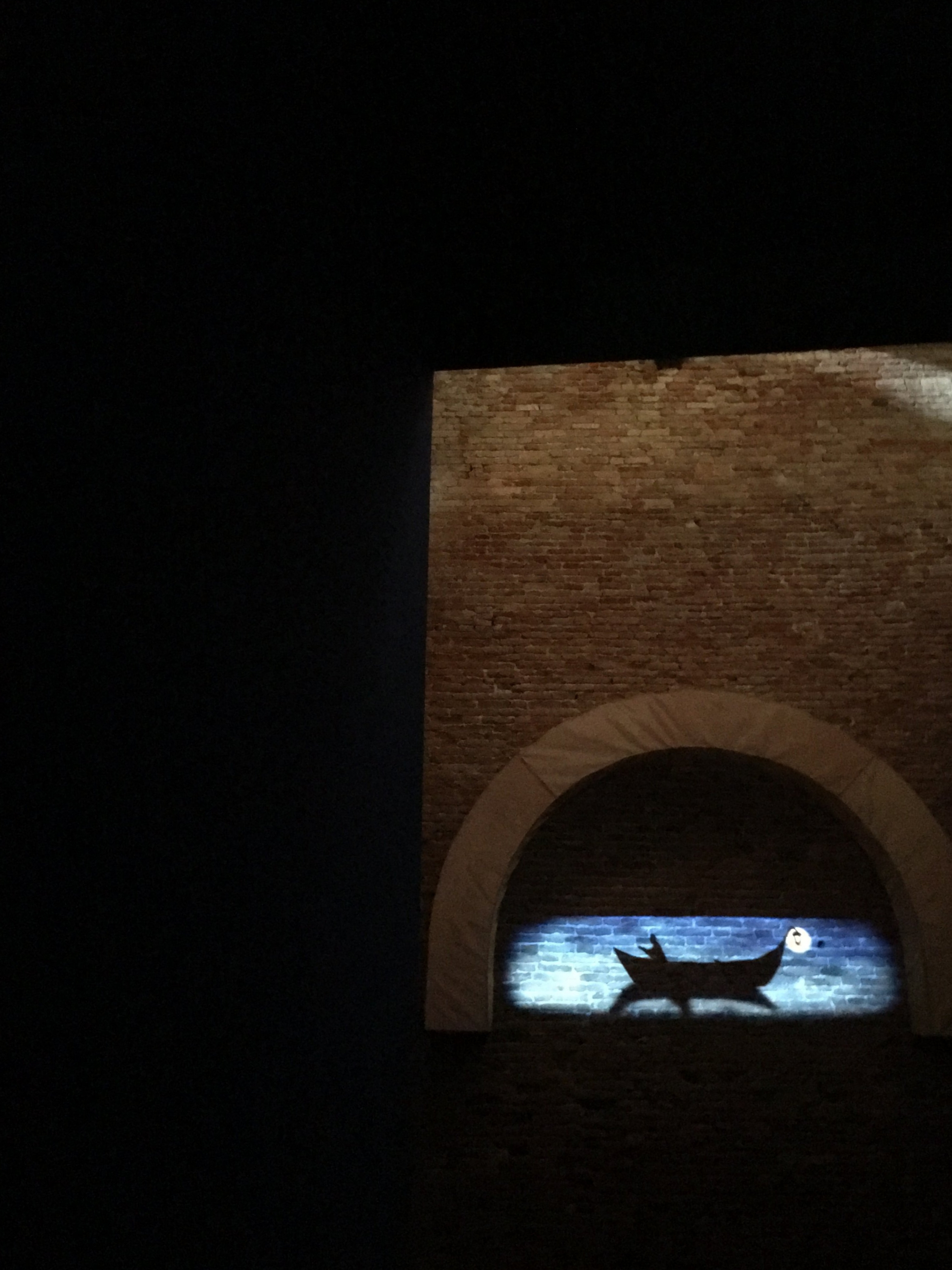 The Tale of a Night Wanderer_Projection on Resi Girardello's copper mesh and lycra structure.jpg