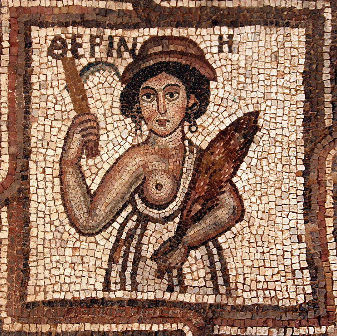 Portrait of a lady with the attributes of Andromeda. Floor mosaic, 5th century AD.  Petra (Jordan), Church