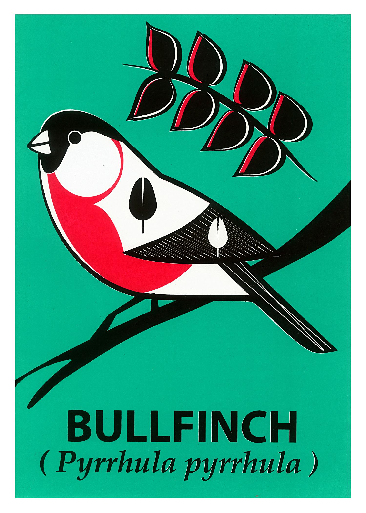 Limited Edition Bullfinch Screenprint