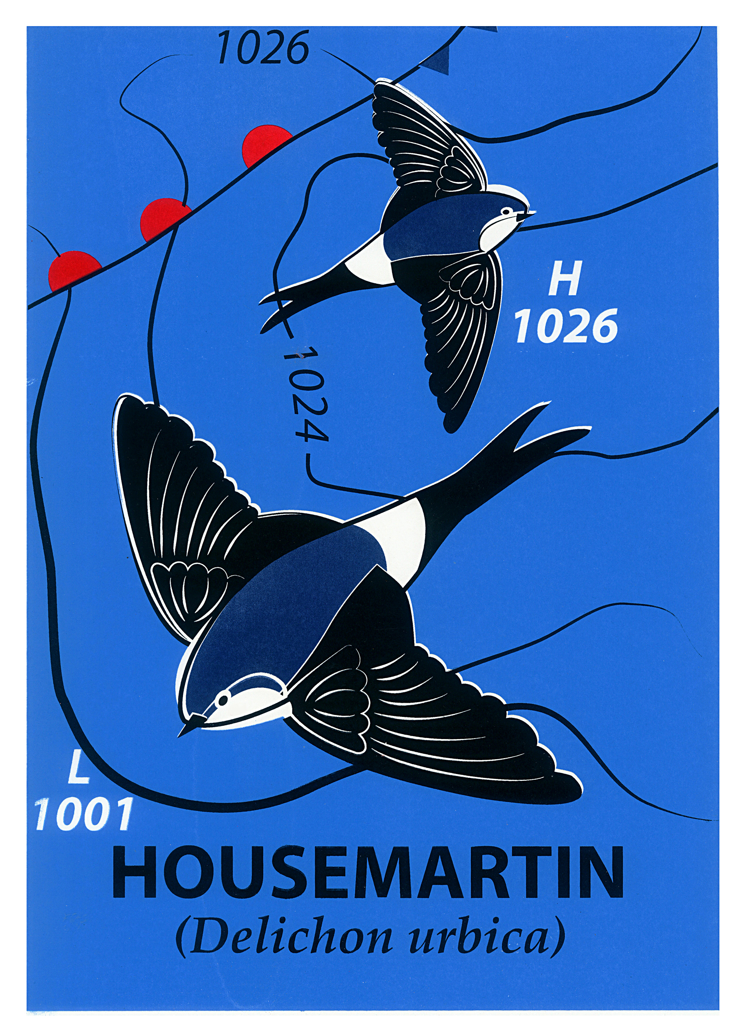 Limited Edition House Martin Screenprint