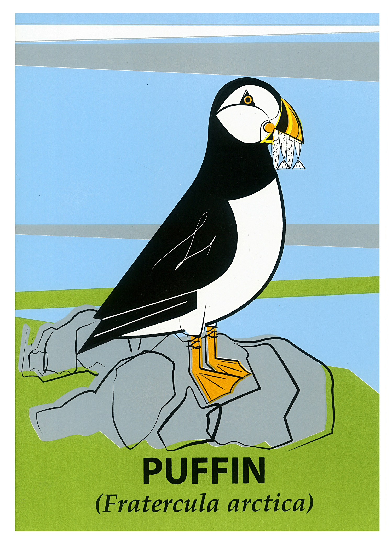 Limited Edition Puffin Screenprint