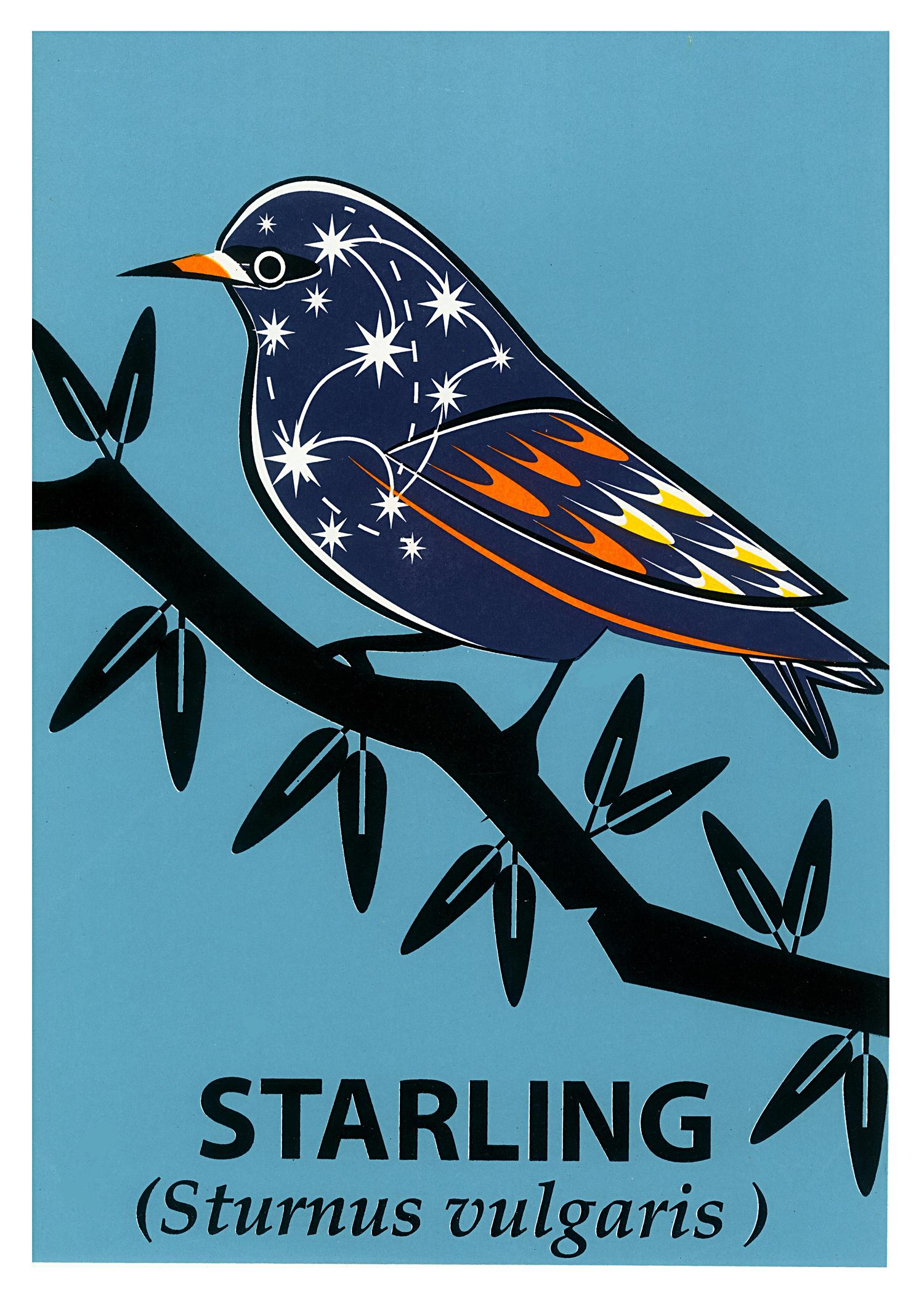 Limited Edition Starling Screenprint