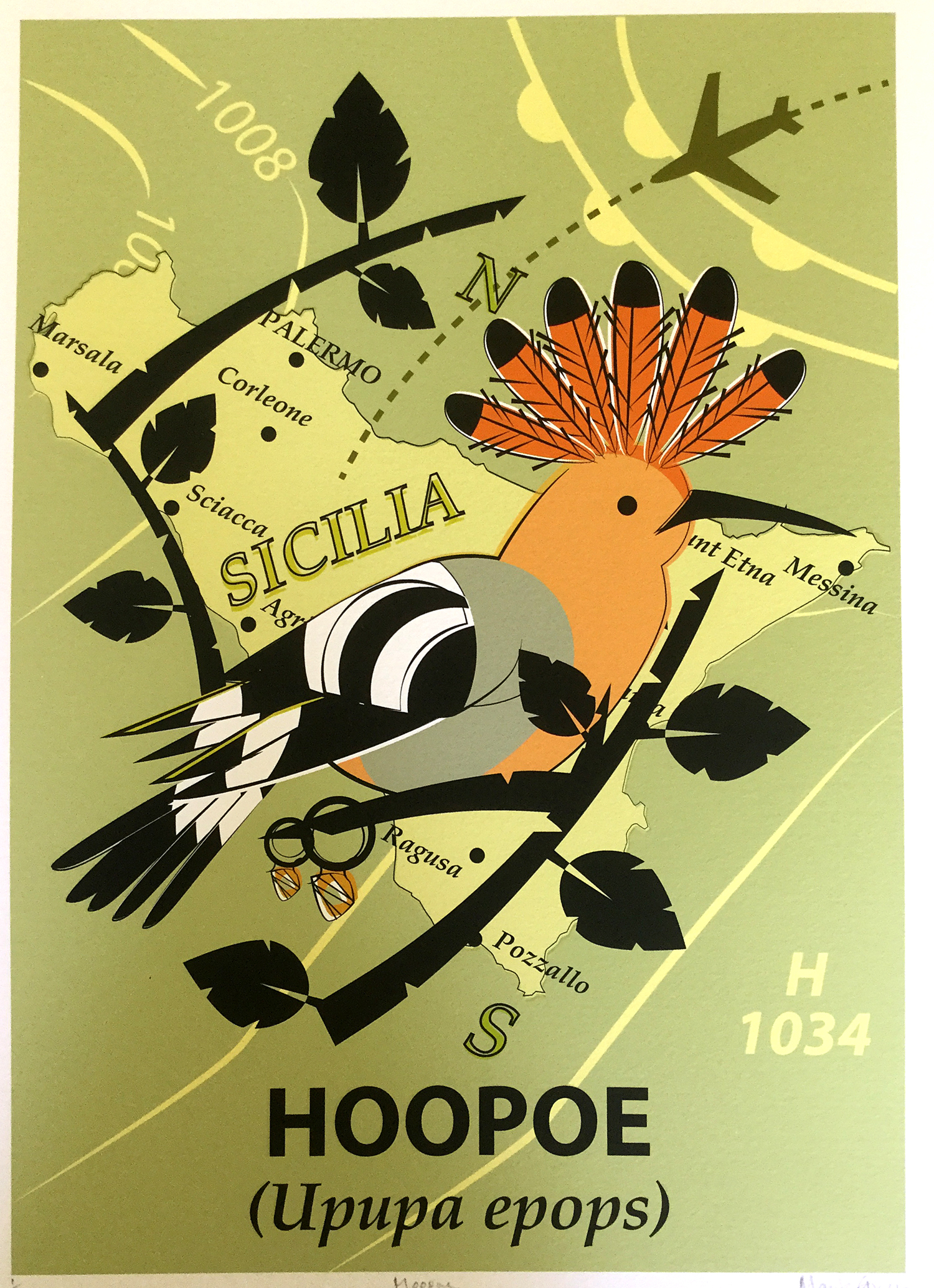 Hoopoe Giclée Print Commission 1/1
