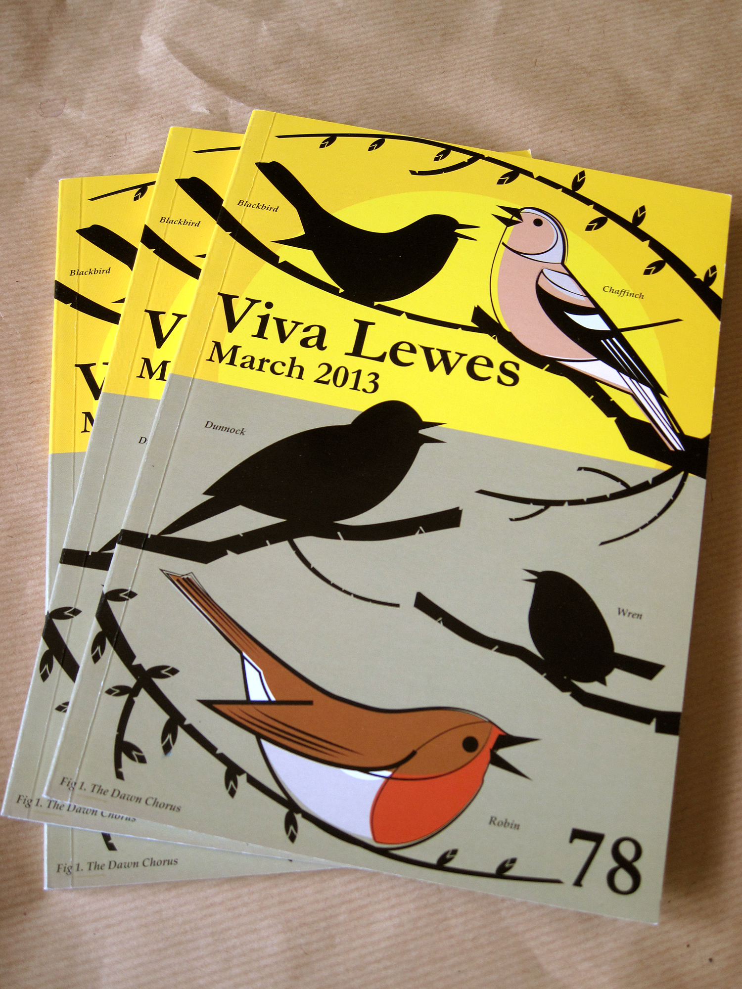 Viva Lewes March 2013 Issue