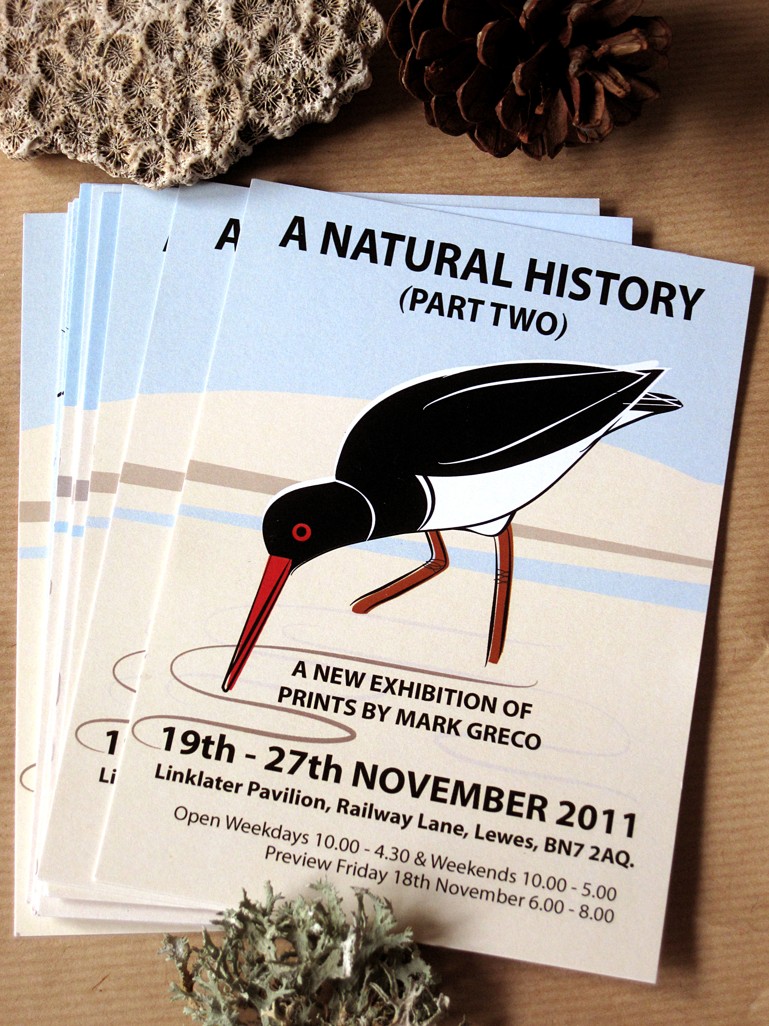 Exhibition Promotional Postcard ANHP2