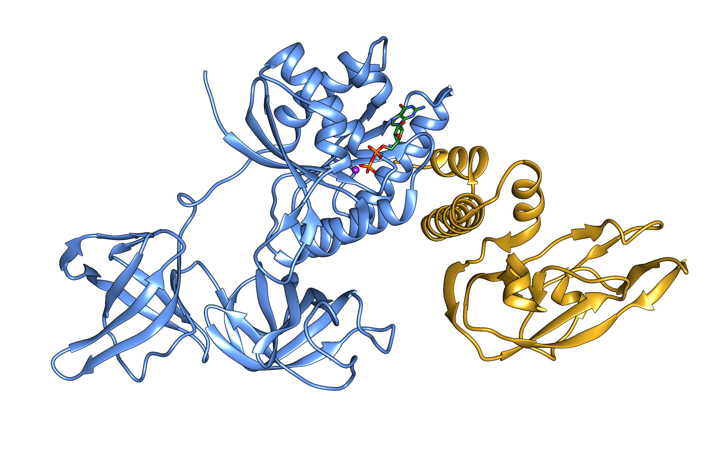 T6SS NADase effector Tse6 in complex with translation elongation factor Tu