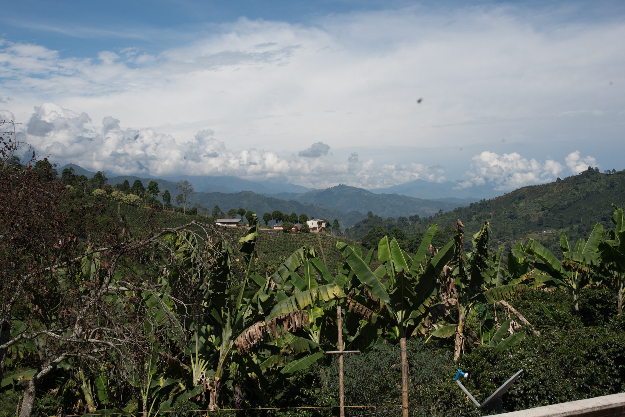 Colombia_Part_1_Photography_By_Katie_Alexis-1513.jpg