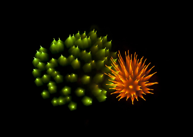 Long-Exposure-Firework5.jpg