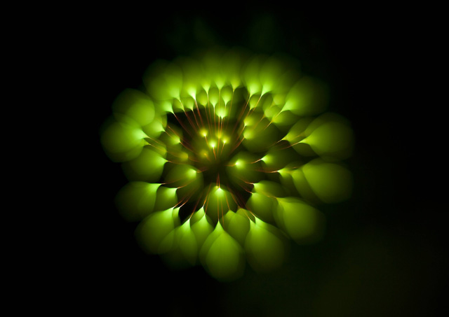 Long-Exposure-Firework3.jpg