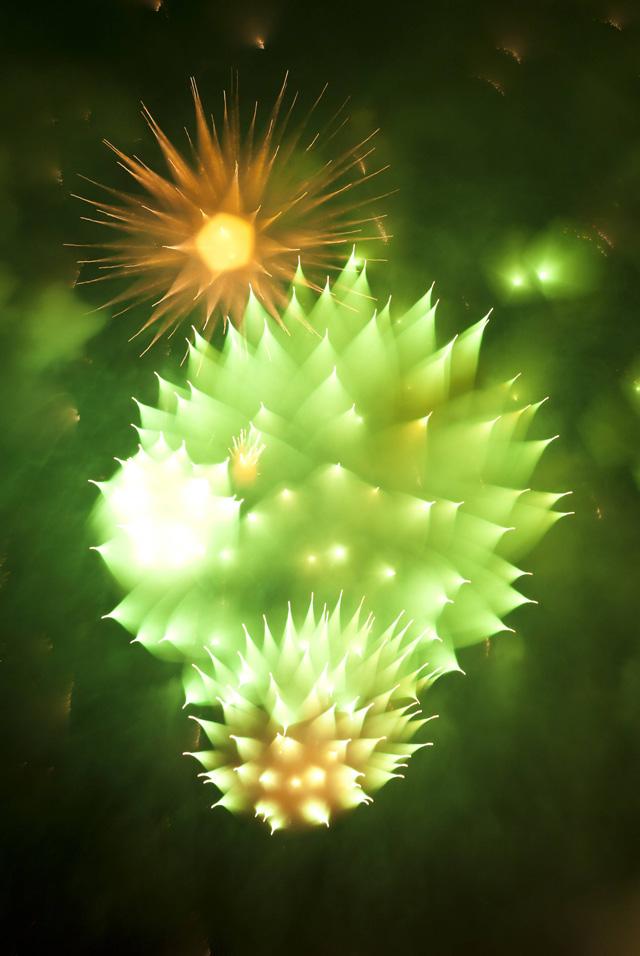 Long-Exposure-Firework1.jpg