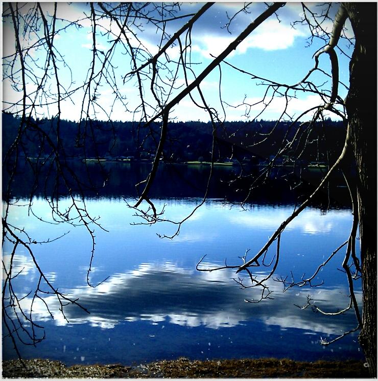 Cloud-in-Tide.png