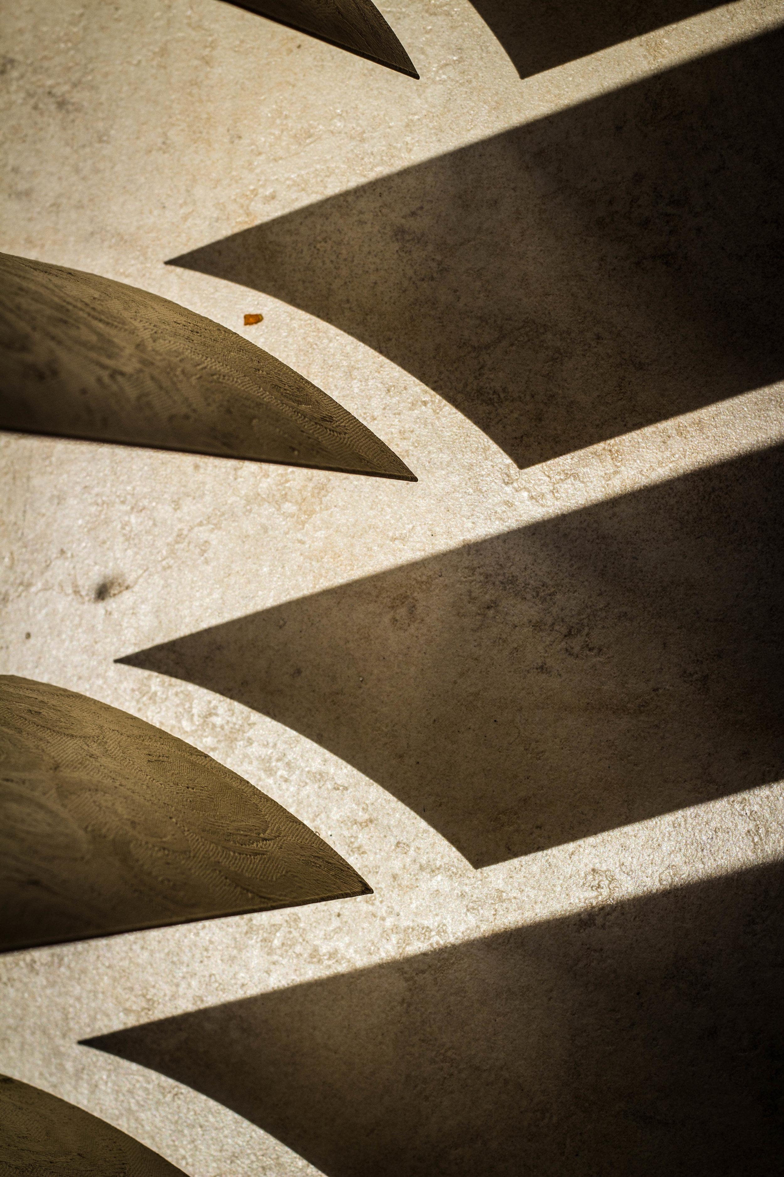 Shadow (1 of 1).jpg