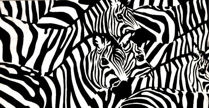 Zebras   | Colored Pencil