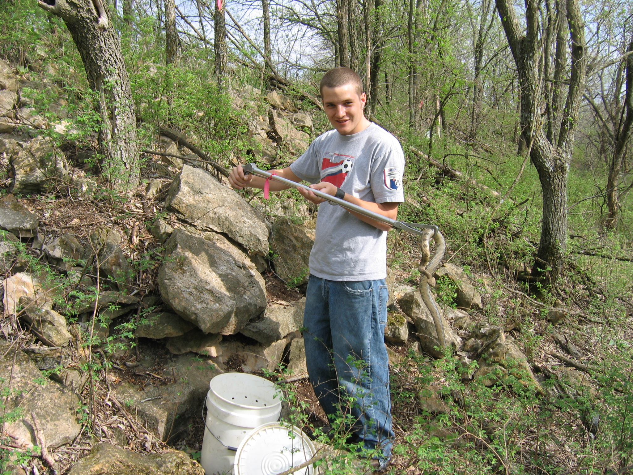 Tracking Timber Rattlesnakes back at KU (2006)