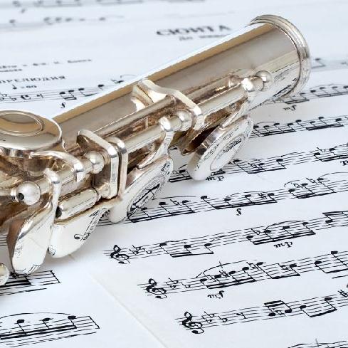 Učenje-flavte-glasbena-šola-ljubljana-Amarilis-3-01.jpg