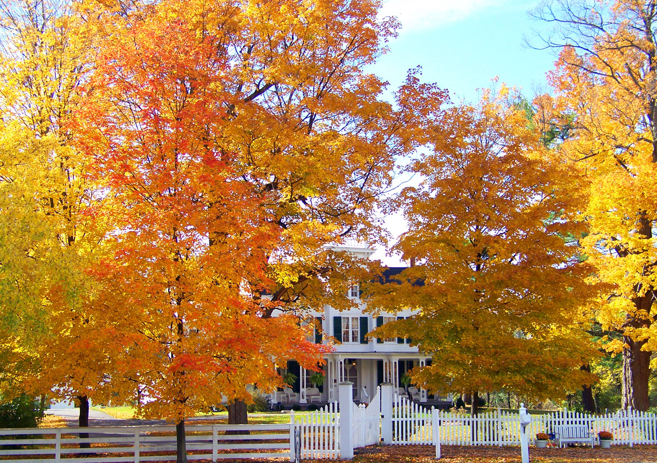 old-house-in-autumn-trees-1302872823s7x.jpg
