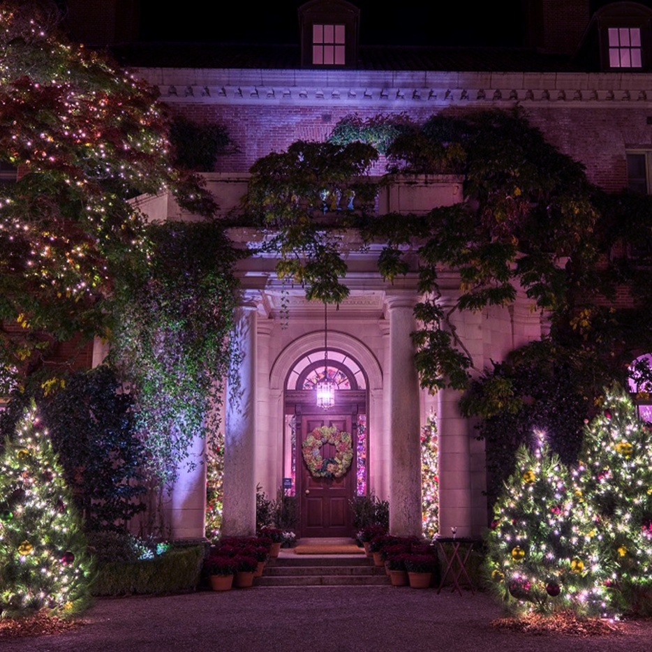 purple-christmas-Cred_-Drew-Altizer-1-2-e1533594379916.png