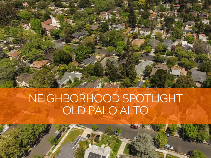 Neighborhood Spotlight Template (2).png