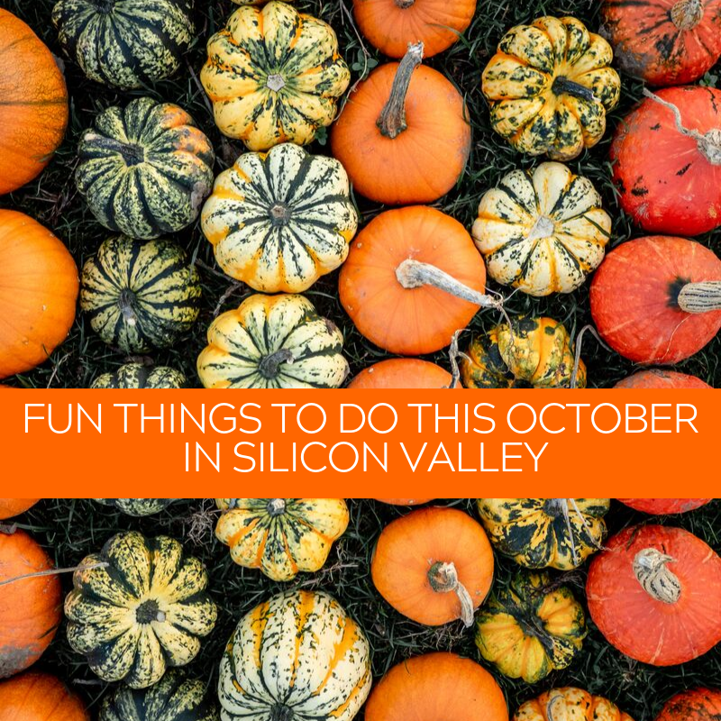 Fun Things to Do_ October 2019.png