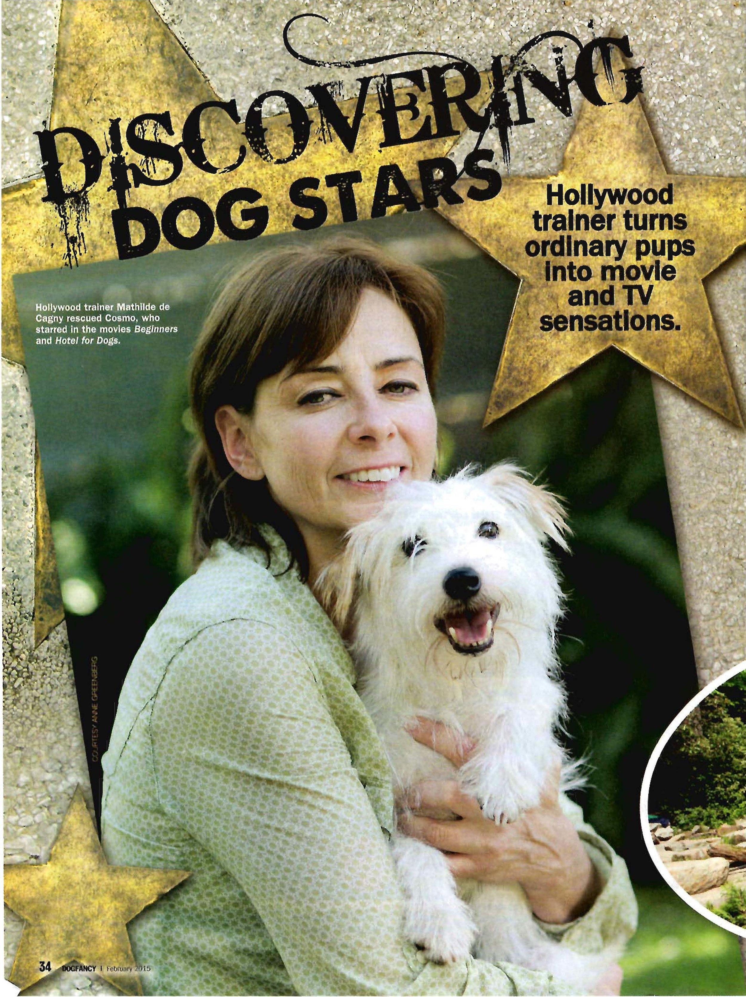 DogFancy2_Page_1.jpg