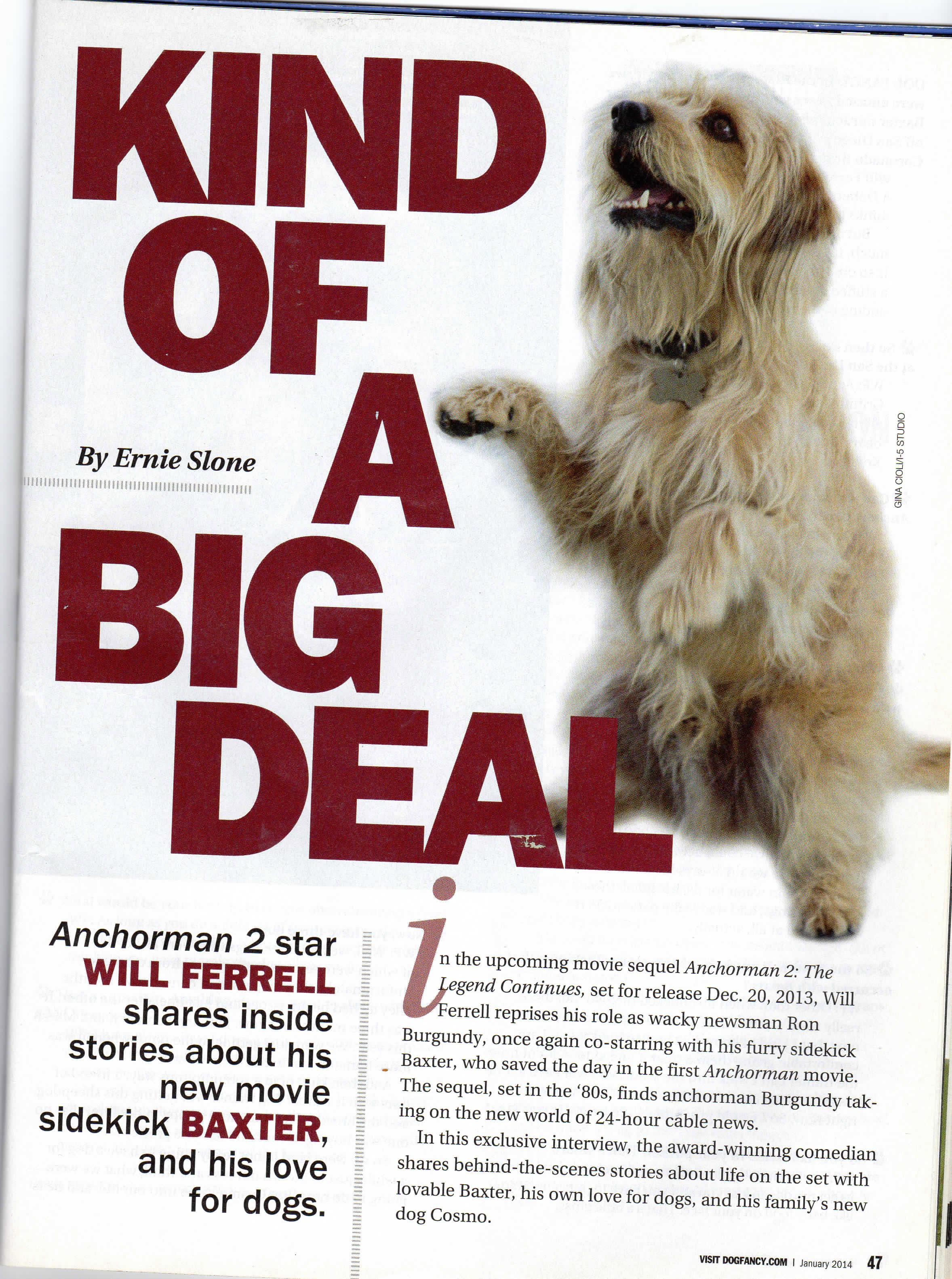Dog Fancy Anchorman20160910_16401801-3.jpg