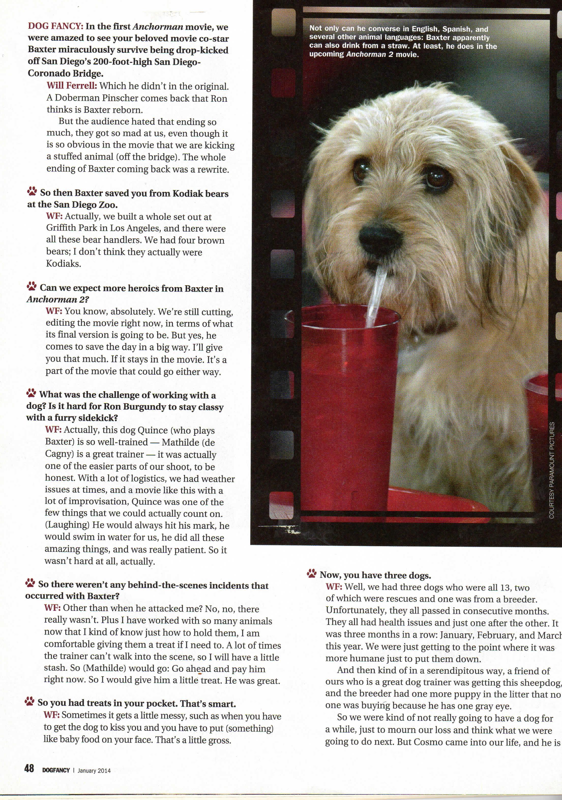 Dog Fancy Anchorman20160910_16401801-4.jpg
