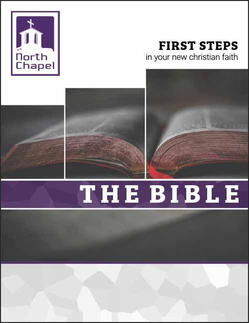 first-steps---the-Bible.jpg